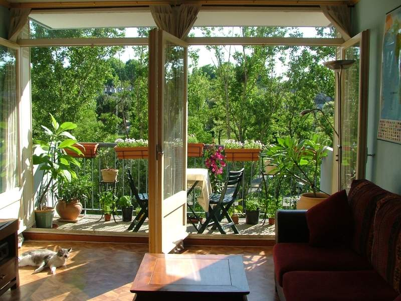 Create a wildlife haven on your balcony | The joy of plants