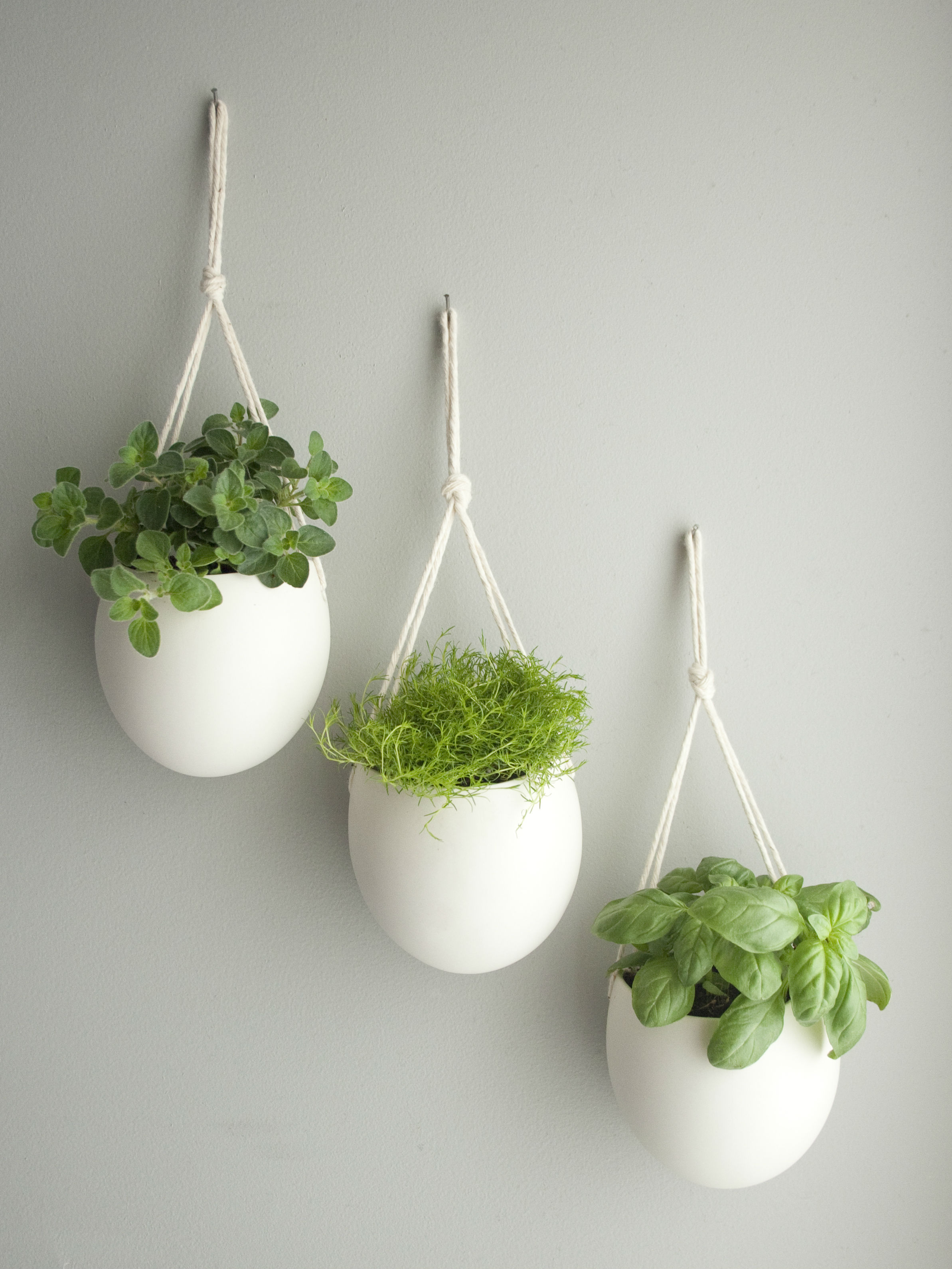 Porcelain Planter by designer Farrah Sit The joy of plants