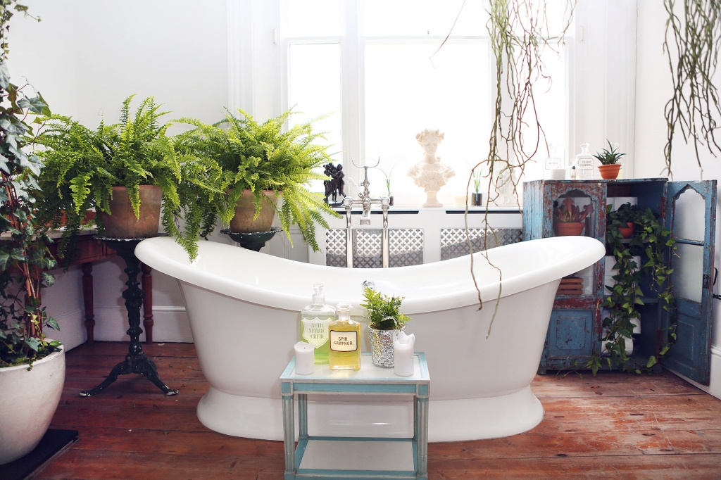 Houseplants that thrive in your bathroom | The joy of plants on aloe plant in bathroom, air plants in bathroom, prayer plant in bathroom,