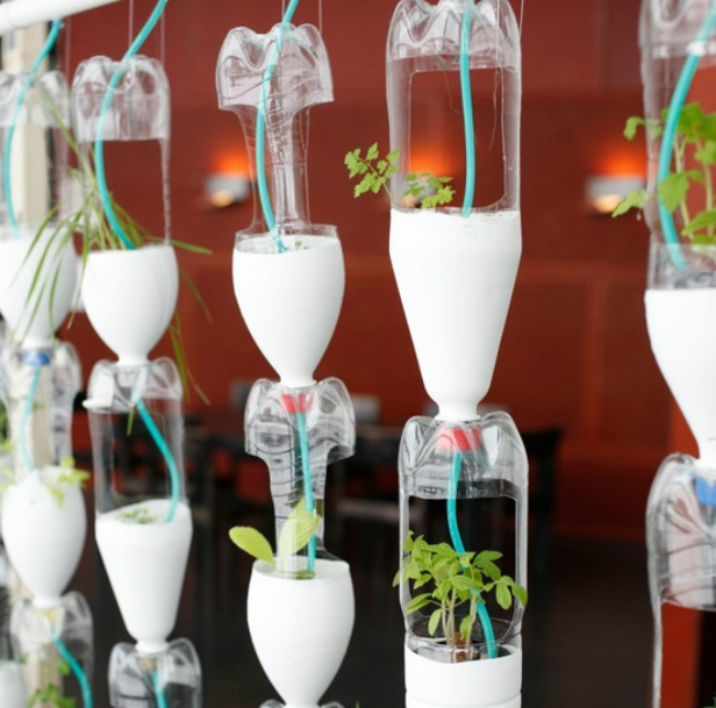 Diy make your own mini greenhouse the joy of plants for Making a small greenhouse