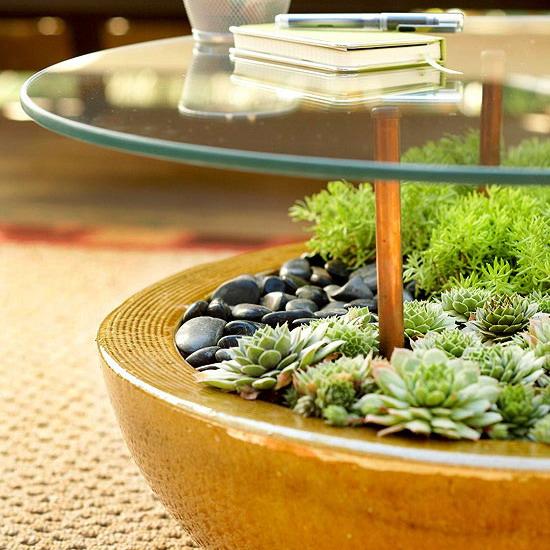 Terribly cool terrarium tables the joy of plants Table terrarium