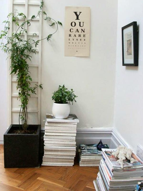 How To Use An Indoor Trellis The Joy Of Plants